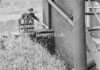 SD940931A, Man marking Ordnance Survey minor control revision point with an arrow in 1950s