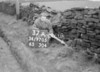 SD970537A, Man marking Ordnance Survey minor control revision point with an arrow in 1950s