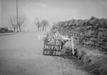 SD970758B, Man marking Ordnance Survey minor control revision point with an arrow in 1950s