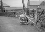 SD970874B, Man marking Ordnance Survey minor control revision point with an arrow in 1950s