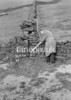 SD970691B, Man marking Ordnance Survey minor control revision point with an arrow in 1950s