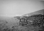 SD950782B, Man marking Ordnance Survey minor control revision point with an arrow in 1950s
