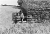 SD721309B, Man marking Ordnance Survey minor control revision point with an arrow in 1950s