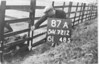 SD721287A, Man marking Ordnance Survey minor control revision point with an arrow in 1940s