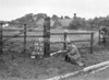 SD741077L, Man marking Ordnance Survey minor control revision point with an arrow in 1950s
