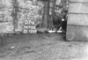 SD721307A, Man marking Ordnance Survey minor control revision point with an arrow in 1940s