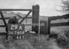 SD760829A, Ordnance Survey Revision Point photograph in Greater Manchester