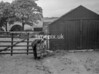 SD771287A, Ordnance Survey Revision Point photograph in Greater Manchester