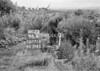 SD771396A, Ordnance Survey Revision Point photograph in Greater Manchester