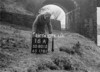 SD801216A, Ordnance Survey Revision Point photograph in Greater Manchester
