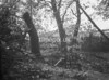 SD781253A, Ordnance Survey Revision Point photograph in Greater Manchester