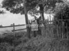 SD771288A, Ordnance Survey Revision Point photograph in Greater Manchester