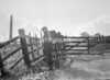 SD781291A, Ordnance Survey Revision Point photograph in Greater Manchester