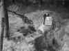SD771239B, Ordnance Survey Revision Point photograph in Greater Manchester