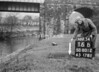 SD801216B, Ordnance Survey Revision Point photograph in Greater Manchester