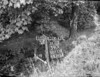 SD771239A, Ordnance Survey Revision Point photograph in Greater Manchester