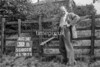 SD801230B, Ordnance Survey Revision Point photograph in Greater Manchester