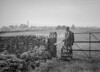SD811224A, Ordnance Survey Revision Point photograph in Greater Manchester