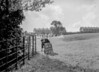 SD771334A, Ordnance Survey Revision Point photograph in Greater Manchester