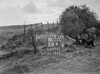 SD771228B, Ordnance Survey Revision Point photograph in Greater Manchester