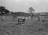 SD801341B, Ordnance Survey Revision Point photograph in Greater Manchester