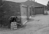 SD771265B, Ordnance Survey Revision Point photograph in Greater Manchester