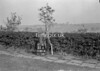 SD801435A, Ordnance Survey Revision Point photograph in Greater Manchester