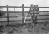 SD781245B2, Ordnance Survey Revision Point photograph in Greater Manchester