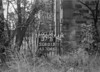 SD801337B, Ordnance Survey Revision Point photograph in Greater Manchester