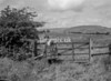 SD771207B1, Ordnance Survey Revision Point photograph in Greater Manchester