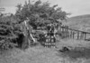 SD811267B, Ordnance Survey Revision Point photograph in Greater Manchester