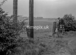 SD810734B, Ordnance Survey Revision Point photograph in Greater Manchester