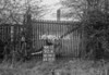 SD781192K, Ordnance Survey Revision Point photograph in Greater Manchester