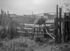 SD781191A, Ordnance Survey Revision Point photograph in Greater Manchester