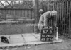 SD781067B, Ordnance Survey Revision Point photograph in Greater Manchester