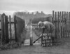 SD781160A, Ordnance Survey Revision Point photograph in Greater Manchester