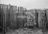 SD781181A, Ordnance Survey Revision Point photograph in Greater Manchester