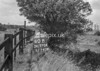 SD770460B, Ordnance Survey Revision Point photograph in Greater Manchester