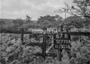 SD770467B, Ordnance Survey Revision Point photograph in Greater Manchester