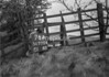 SD770476A, Ordnance Survey Revision Point photograph in Greater Manchester