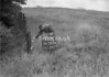 SD760490B, Ordnance Survey Revision Point photograph in Greater Manchester
