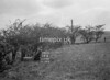 SD770719B, Ordnance Survey Revision Point photograph in Greater Manchester