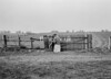 SD760629B, Ordnance Survey Revision Point photograph in Greater Manchester