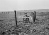 SD760648A, Ordnance Survey Revision Point photograph in Greater Manchester