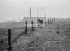 SD760648B, Ordnance Survey Revision Point photograph in Greater Manchester