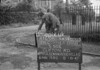 SD800369B, Ordnance Survey Revision Point photograph in Greater Manchester