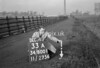 SD800133A2, Ordnance Survey Revision Point photograph in Greater Manchester