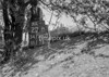 SD780327B, Ordnance Survey Revision Point photograph in Greater Manchester