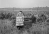 SD780328B, Ordnance Survey Revision Point photograph in Greater Manchester