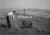 SD790219B, Ordnance Survey Revision Point photograph in Greater Manchester
